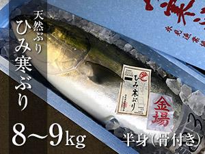 ひみ寒ぶり 8〜9kg 半身(骨付き)